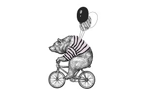 Bear Rides Bicycle T-shirt Print