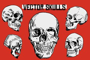 Hand Drawn Vector Skulls