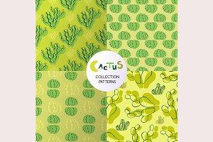 Cactus patterns set