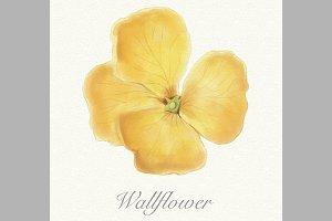 Yellow watercolor wallflower card