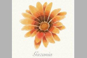 Orange watercolor gazania card