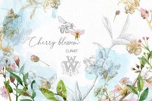 Watercolor cherry blossom clipart