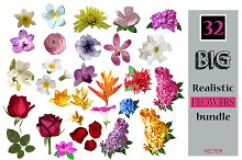 32 Realistic flowers bundle.
