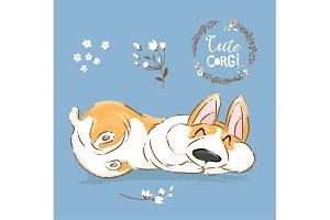 Cute Corgi Dog