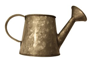 Isolated Tin Watering Can