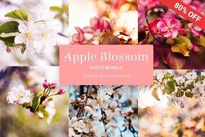 Apple Blossom Photo Bundle
