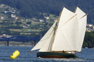 Traditional sailing  boats race