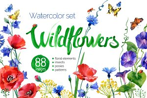 watercolor wildflower