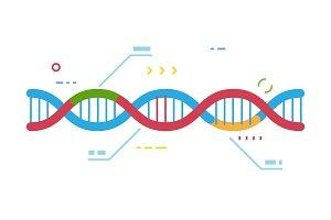 DNA vector illustration