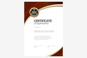 Certificate311