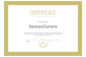 Certificate313