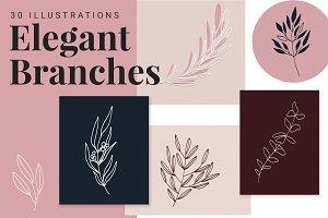 Elegant Branch Illustrations