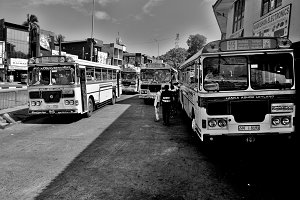 Public Buses on a Station, Sri Lanka