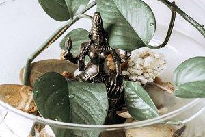 zen houseplant with Goddess Lakshmi