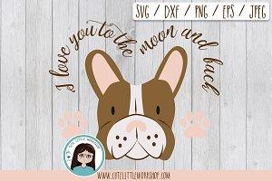 Boston terrier brown svg
