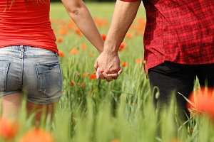 Back view of a couple holding hands in a field.jpg