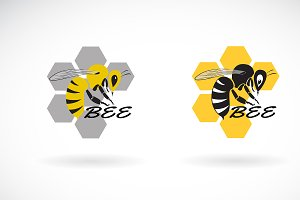 Vector of bee and honeycomb design.