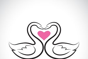 Two loving swans and pink heart.