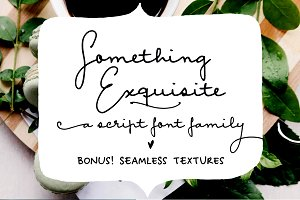 Something Exquisite | a script font