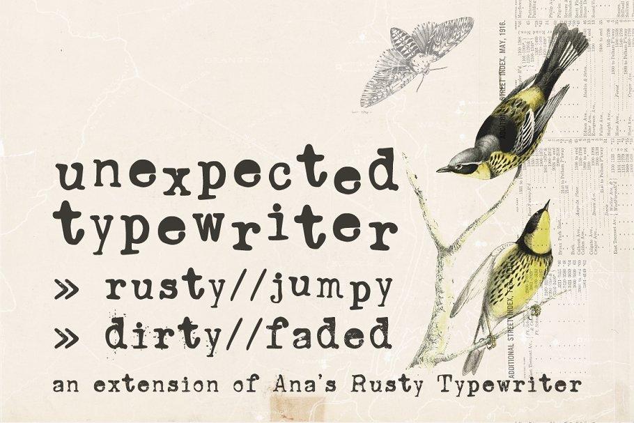 Unexpected Typewriter font ~ Serif Fonts ~ Creative Market