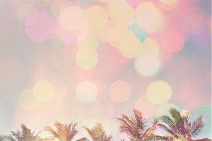 Miami Beach Colors