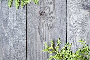 Wooden background with thuja