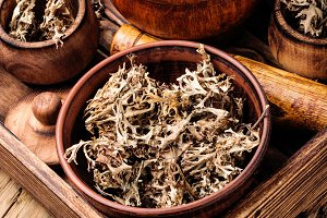 Dried Iceland moss