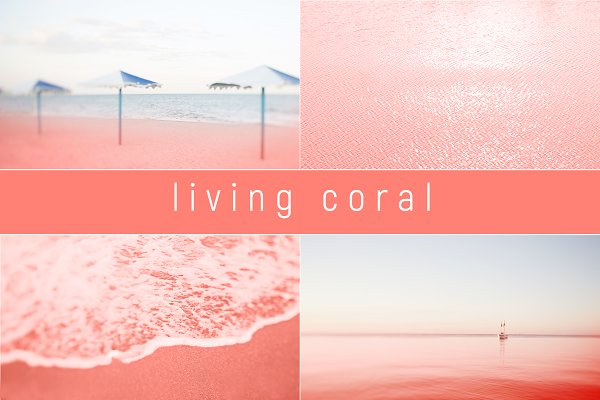 Sea color coral