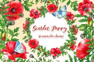 Scarlet Poppy set 18 clipart