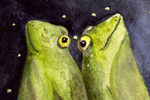 Dreaming Frogs Illustration / Print