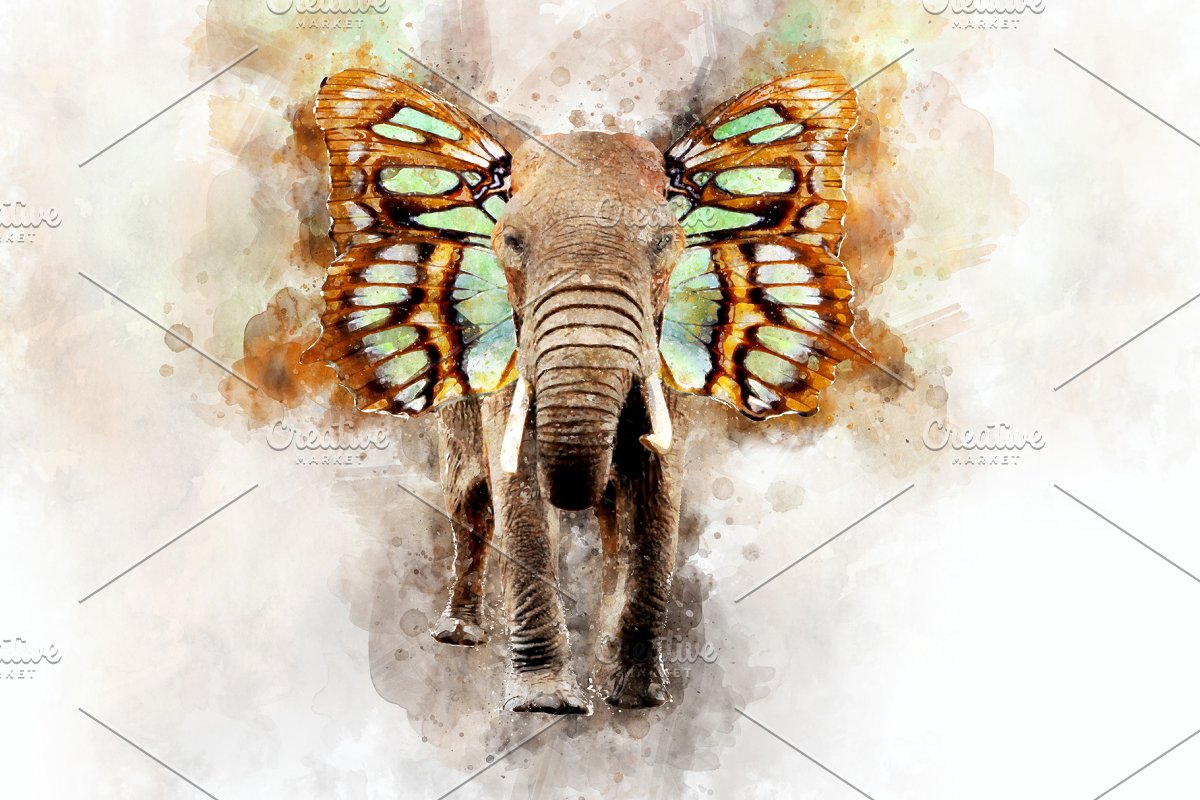 6e6737416 Elephant - watercolor illustration p ~ Illustrations ~ Creative Market