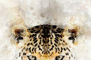 Leopard - watercolor illustration po