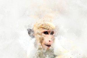 Monkey - watercolor illustration por