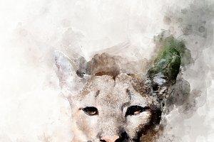 Cougar - watercolor illustration por