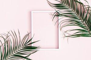 Tropical palm leaves, photo frame