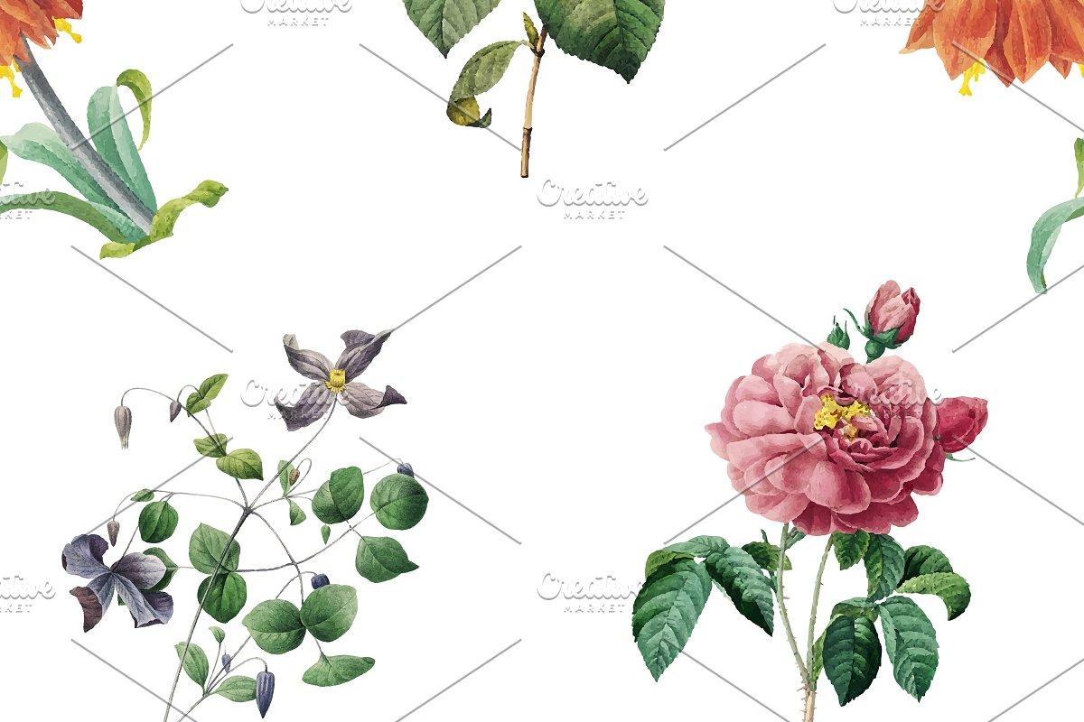 Hand Drawn Floral Wallpaper Vector Custom Designed Illustrations