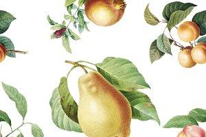 Hand drawn fruits wallpaper vector