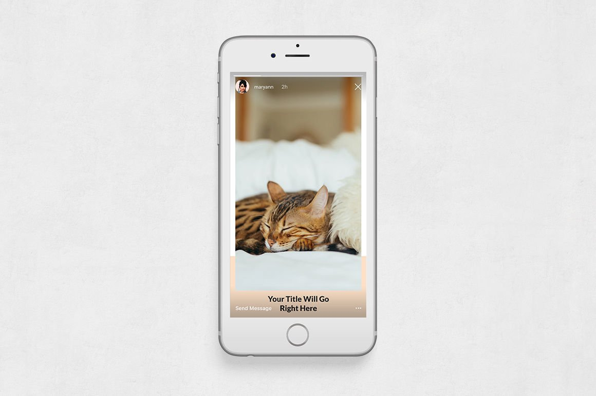 Cats Animated Instagram Stories