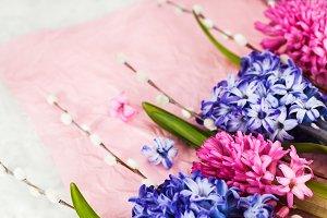 Bouquet of beautiful flowers - blue