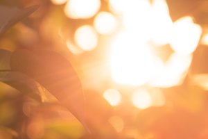 Abstract bokeh background sunset