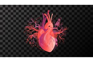 heart Red art illustration vector