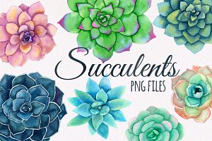 Watercolor succulents flower set