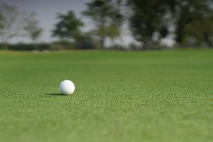 Close-up on a golf ball on a green