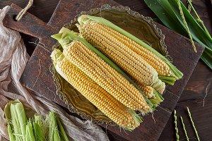 fresh ripe corn cobs