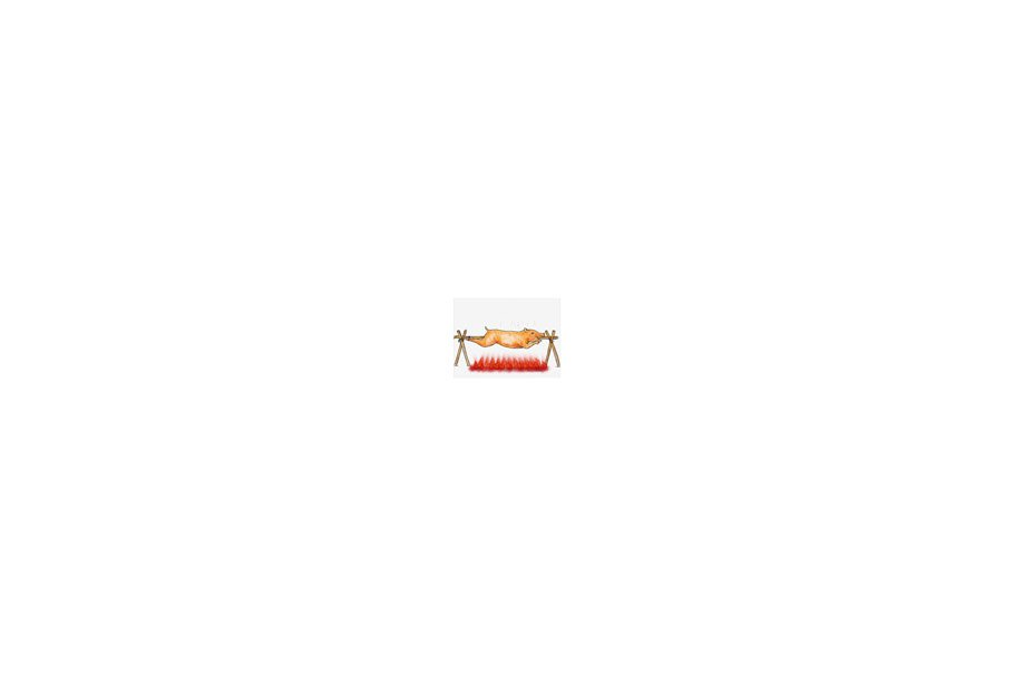 Animation Roast Pig Lechon  Roasting