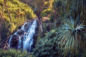 Tropical waterfall on Hawaii tropic