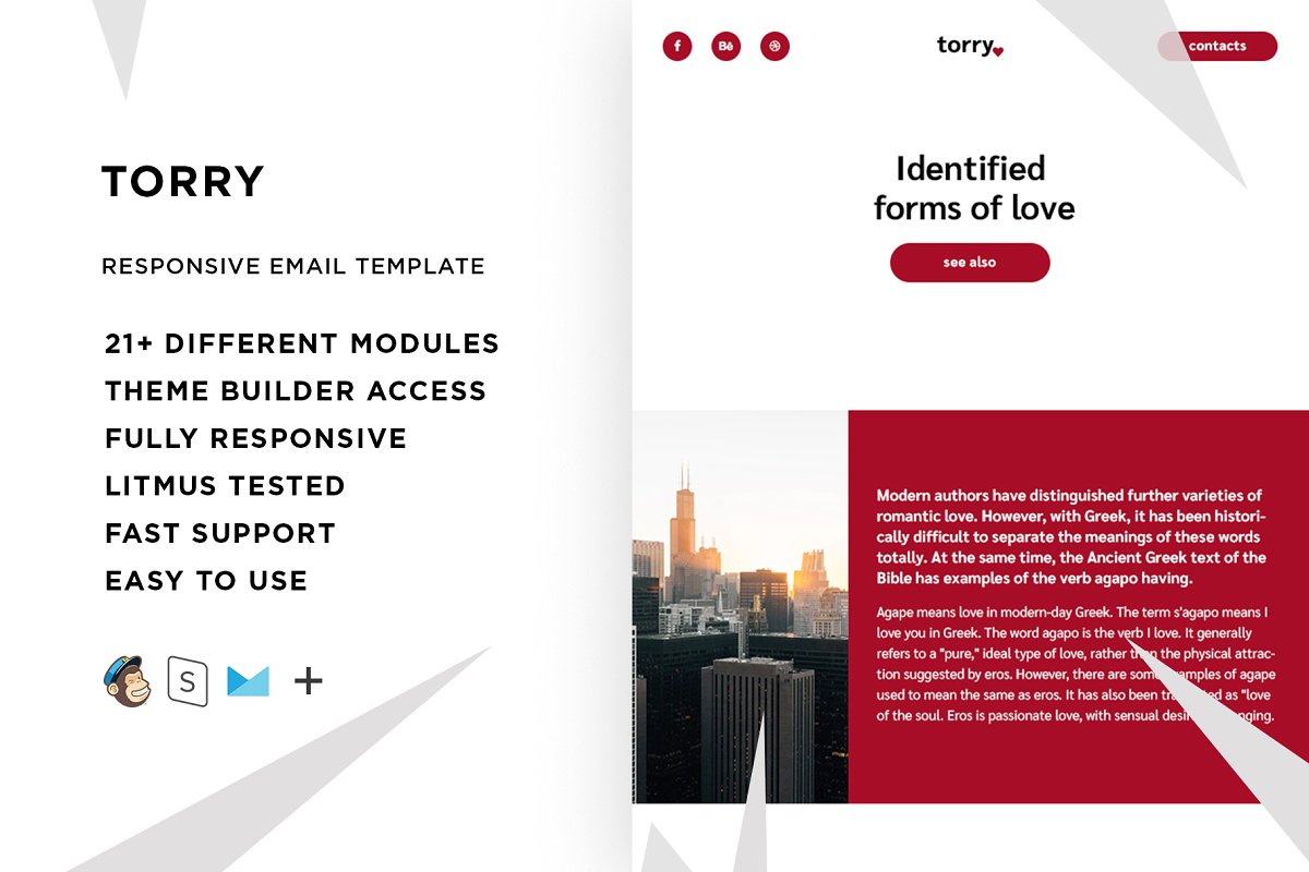 Torry – Email template + Builder