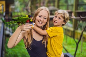 Mom and son feed the parrot in the