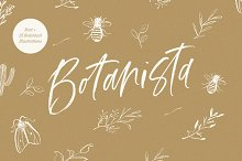 Botanista | Font + Illustrations by  in Script Fonts