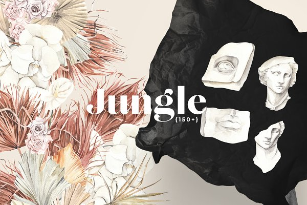Illustrations: Lana Elanor - JUNGLE floral modern art collection